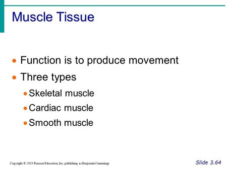 Muscle Tissue Slide 3.64 Copyright © 2003 Pearson Education, Inc. publishing as Benjamin Cummings  Function is to produce movement  Three types  Skeletal.