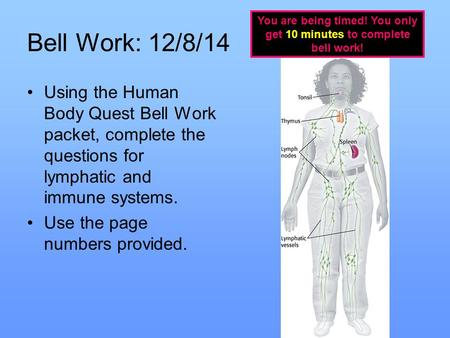 Bell Work: 12/8/14 Using the Human Body Quest Bell Work packet, complete the questions for lymphatic and immune systems. Use the page numbers provided.