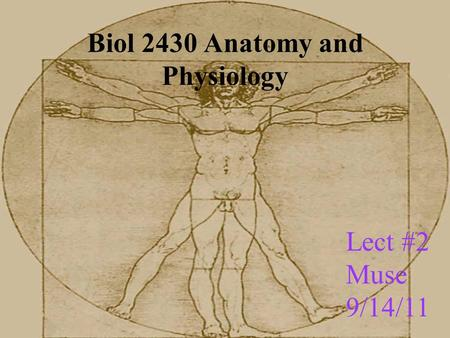 Biol 2430 Anatomy and Physiology Lect #2 Muse 9/14/11.