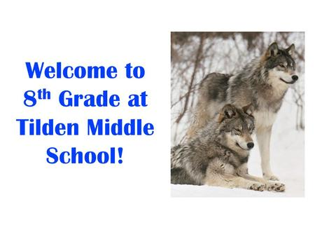 Welcome to 8 th Grade at Tilden Middle School!. We Are Here To Support You! Irina LaGrange, Principal Jim Alessi, Counselor Hope Schmidt, Team Leader.