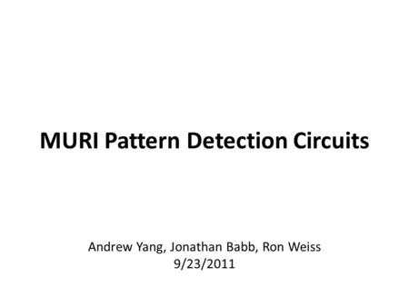 MURI Pattern Detection Circuits