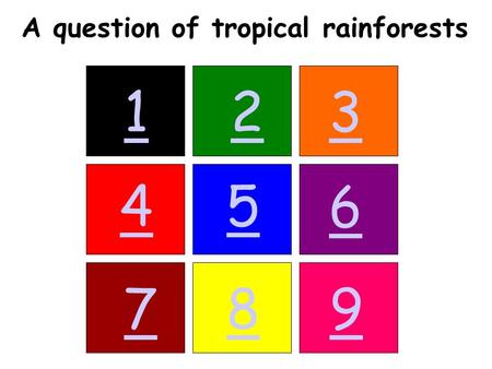 123 45 6 789 A question of tropical rainforests. Back.