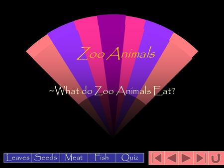 Zoo Animals ~What do Zoo Animals Eat? Leaves Meat Seeds FishQuiz.
