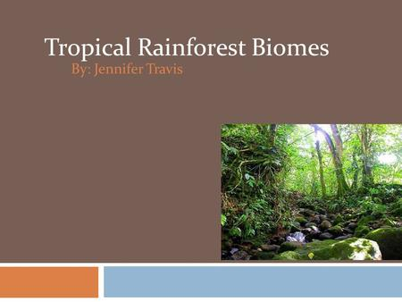 By: Jennifer Travis Tropical Rainforest Biomes. Where are the rainforests found?  Central America in the Amazon river basin.  Africa - Zaire basin,