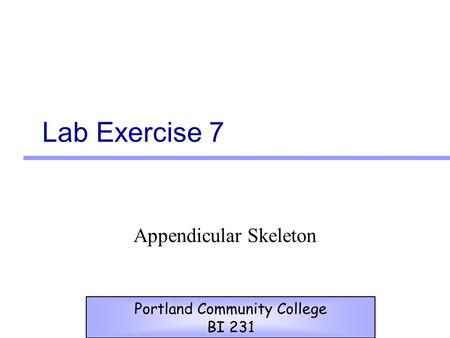 Lab Exercise 7 Appendicular Skeleton Portland Community College BI 231.