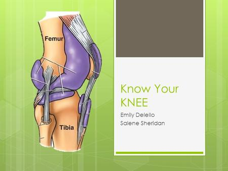 Know Your KNEE Emily Delello Salene Sheridan. The knee joint is 3 joints in1  The Tibiofemoral joint is a hinge joint permitting flextion and extension.