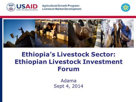 Agricultural Growth Program- Livestock Market Development Ethiopia's Livestock Sector: Ethiopian Livestock Investment Forum Adama Sept 4, 2014.