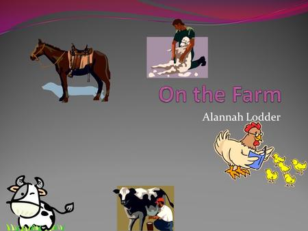 Alannah Lodder. Animals on farms Pigs Sheep Cow Goat Chicken Sheep dog horses.