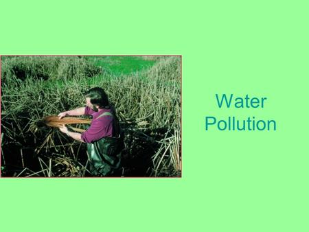 Water Pollution. Types of Water Pollution Effect of sewage on dissolved oxygen and biological oxygen demand.