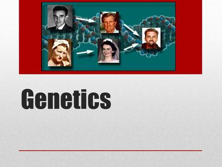 Genetics. Study of heredity and the variation of inherited characteristics Heredity- the biological process where parents pass on certain genes to their.