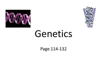 "Genetics Page 114-132. Gregor Mendel Heredity- passing of traits from parent to offspring Gregor Mendel is considered to be the ""Father of Genetics"" He."
