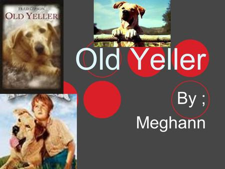 Old Yeller By ; Meghann Authors Biography He was born Febuary7,1908. He also had a son. He died August 14,1973,he also graduated in 1926 from Mason High.