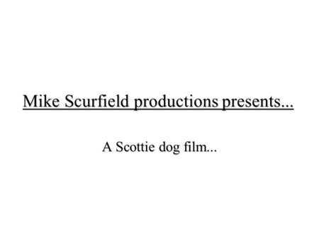 Mike Scurfield productions presents... A Scottie dog film...
