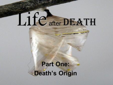 "Life Life after Death Part One: Death's Origin. Genesis 32:1-2 Genesis 2:7 ""Then the LORD God formed man of dust from the ground, and breathed into his."