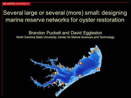 Several large or several (more) small: designing marine reserve networks for oyster restoration Brandon Puckett and David Eggleston North Carolina State.