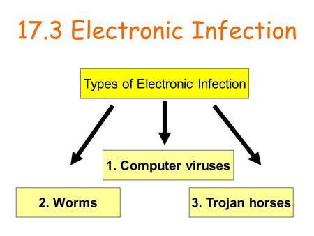 17.3 Electronic Infection Types of Electronic Infection 1. Computer viruses 3. Trojan horses2. Worms.