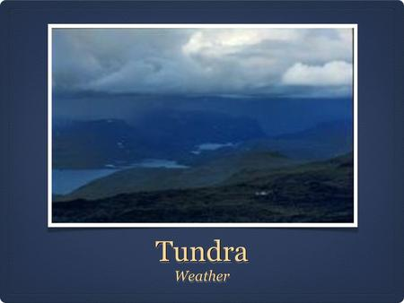 TundraTundra WeatherWeather. Climate and Weather: Winter The Tundra biome is one of the most cold and harshest climates in the world. The dry/cold conditions.