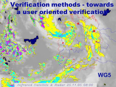 Verification methods - towards a user oriented verification WG5.