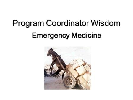 Program Coordinator Wisdom Emergency Medicine. Program Structure 4 Year Residency 12 Residents/PGY = 48 Residents 1 PD 3 APD 2 PC.