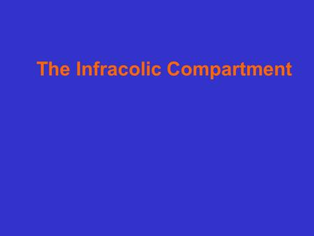 The Infracolic Compartment. Ⅰ. Location It lies between the transverse colon with its mesocolon and the superior aperture of the lesser pelvis. Ⅱ. Contents.