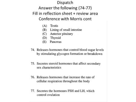 Dispatch Answer the following (74-77) Fill in reflection sheet + review area Conference with Morris cont.