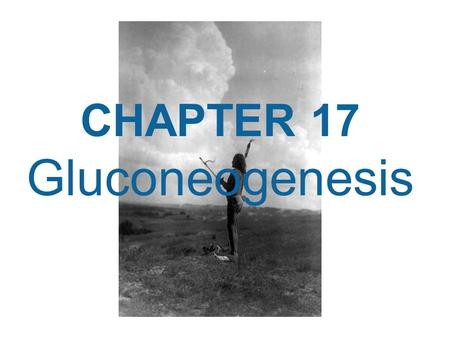 CHAPTER 17 Gluconeogenesis.