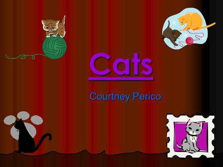 Cats Courtney Perico. Some of the different types of cats are Siamese cats, Alley cats, Burmese cats, Persian cats, Ossey cats, Tuxedo cats, Tortoiseshell.
