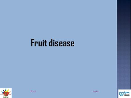 Fruit disease End Next. Introduction:  Fruit diseases are the disease that infects fruit (ripening stage).  Infection may occur in the mother tree itself.