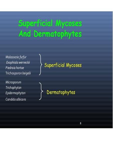 Dermatophytes Infection
