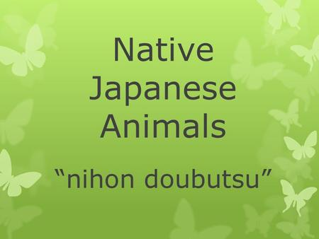 "Native Japanese Animals ""nihon doubutsu"". We are learning these things about native Japanese animals:  Their names  Their habitat  What they eat "