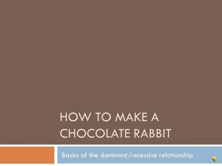 HOW TO MAKE A CHOCOLATE RABBIT Basics of the dominant/recessive relationship.