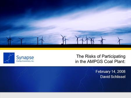The Risks of Participating in the AMPGS Coal Plant: February 14, 2008 David Schlissel.
