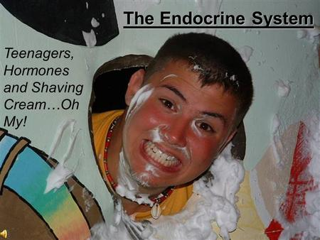 Teenagers, Hormones and Shaving Cream…Oh My! The Endocrine System.