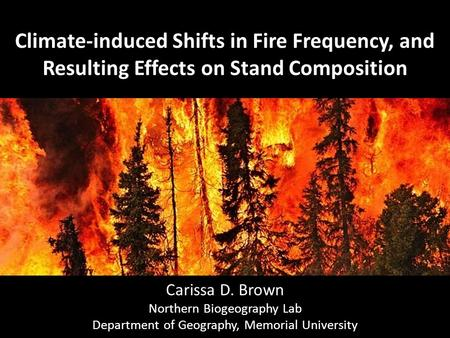 Climate-induced Shifts in Fire Frequency, and Resulting Effects on Stand Composition Carissa D. Brown Northern Biogeography Lab Department of Geography,