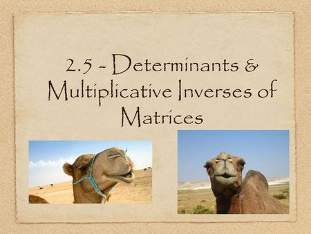 2.5 - Determinants & Multiplicative Inverses of Matrices.