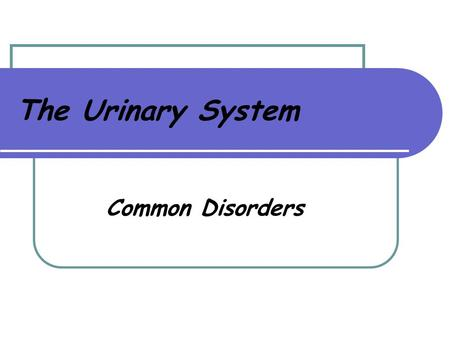 The Urinary System Common Disorders. Urine 95% water 5% waste, toxins and salts Clear, pale amber 1000cc – 2000cc excreted every 24 hours Urochrome is.