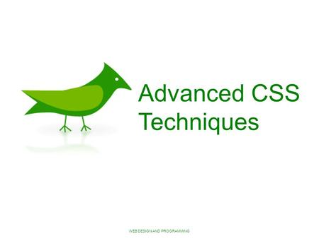 WEB DESIGN AND PROGRAMMING Advanced CSS Techniques.