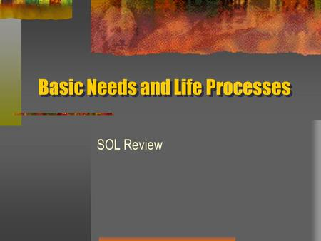 Basic Needs and Life Processes SOL Review. Photosynthesis 12345 A. is the making of food from light, water and carbon dioxide. B. is the changing of food.