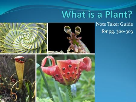 Note Taker Guide for pg. 300-303. Strange Plants.
