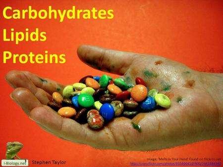 Image: 'Melts In Your Hand' Found on flickrcc.net Carbohydrates Lipids Proteins Stephen Taylor.