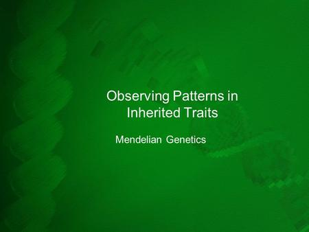 Observing Patterns in Inherited Traits Mendelian Genetics.