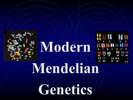 Modern Mendelian Genetics. Gene Expression Every organism has at least two alleles that govern every trait- one from the mother and one from the father-
