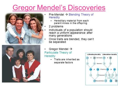 Gregor Mendel's Discoveries Pre-Mendel  Blending Theory of Heredity –Hereditary material from each parent mixes in the offspring 2 problems Individuals.