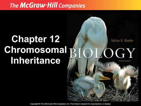 Copyright © The McGraw-Hill Companies, Inc. Permission required for reproduction or display. Chapter 12 Chromosomal Inheritance.