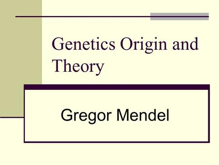 Genetics Origin and Theory Gregor Mendel. Pea Plant Characters and Traits Wrinkled Short Character Trait.