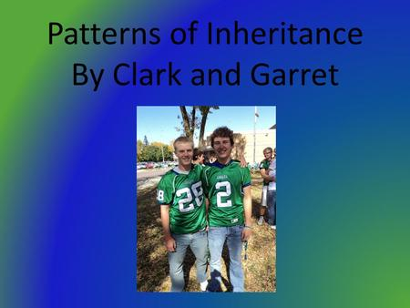 Patterns of Inheritance By Clark and Garret. Heredity Definition- The transmission of traits from one generation to the next.