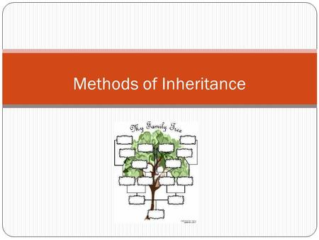 Methods of Inheritance. The Different Forms of Inheritance Mendel's Inheritance (Review) Sex linked (Review) Codominance Incomplete dominance.