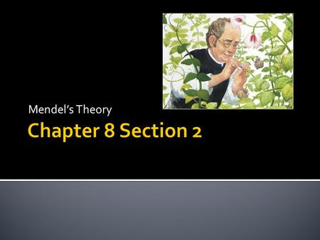 "Mendel's Theory.  Mendel correctly concluded from his experiments that each pea plant has two separate ""heritable factor"" for each trait – one from each."