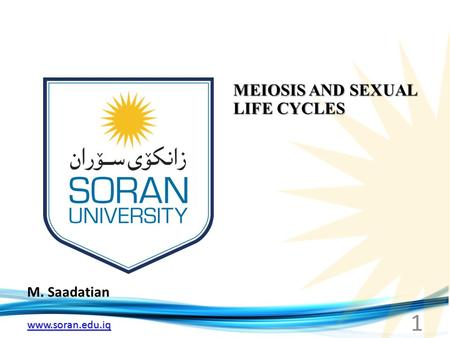 Www.soran.edu.iq M. Saadatian MEIOSIS AND SEXUAL LIFE CYCLES 1.