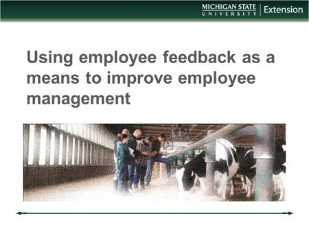 Using employee feedback as a means to improve employee management.
